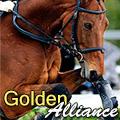 golden Аlliance