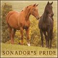 sonador*s pride