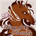 wings of the butterfly